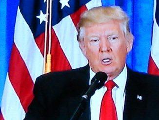 Absurb Presidency of Donald Trump as week 3 closes